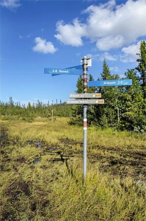 Skyltar visar vägen till både linbana och Duved.