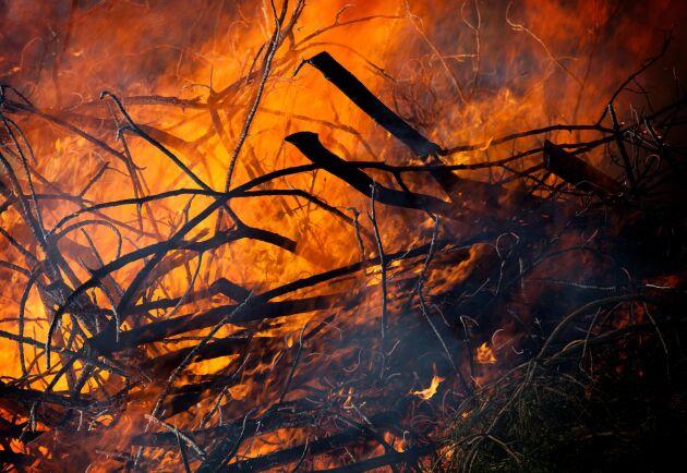 En brand utbröt vid 13-tiden i skogarna utanför Nävekvarn i Södermanland. På fredagsförmiddagen pågick släckningsarbetet fortfarande. Arkivbild.