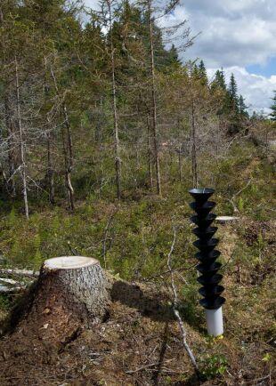 En storskalig användning av feromonfällor i plast kan vara ett sätt att minska skogsskadorna med 800 miljoner kronor bara i Västernorrland, hävdar Gunnar Isacsson, Skogsstyrelsens skogsskadeexpert.