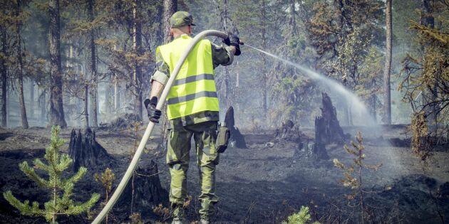 Fritt krisstöd till drabbade skogsägare