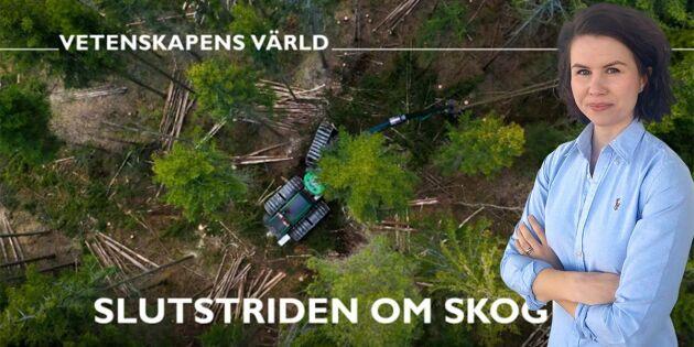 Tråkigt att SVT blir part i skogsdebatten