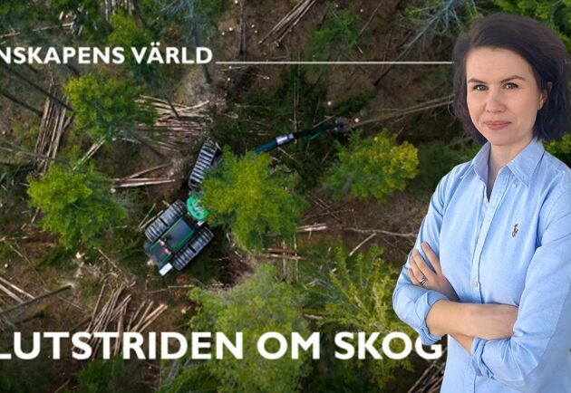 Det kan vara en slump att SVTs serie om skogen publiceras med denna vinkling just i höst, men i så fall är det en olycklig sådan, skriver Ester Hertegård.