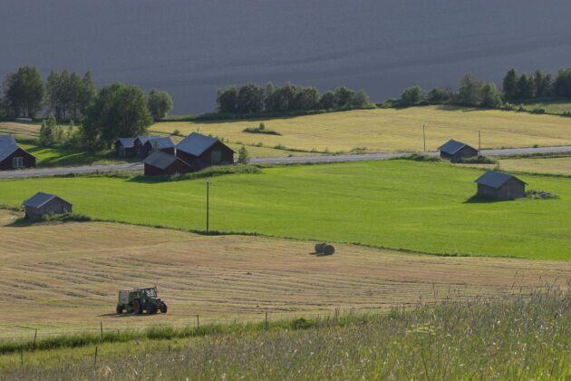 Jordbrukslandskapet vid Övre Kaxås, Jämtland.