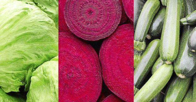 Det är gott och roligt att prova nya sätt att använda grönsakerna på.
