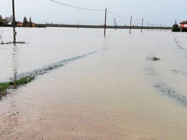 Det italienska jordbruket har fått skador på minst en miljard kronor, troligen betydligt mer.