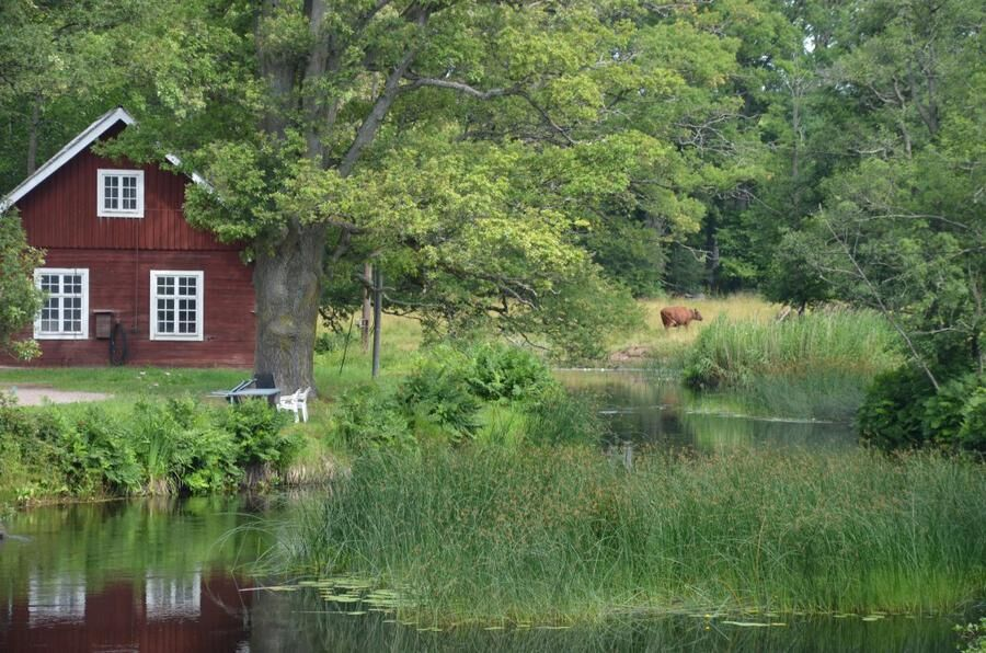 Alsterån, Kalmar. Foto Mönsterås kommun.