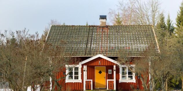 Per-Arne och Magdalena: Vi levde omodernt i vårt torp i skogen ett helt år!