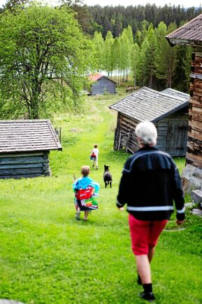 Farmor Gunilla har full sjå att följa efter de pigga barnbarnen, Bo, Sid och Milo.