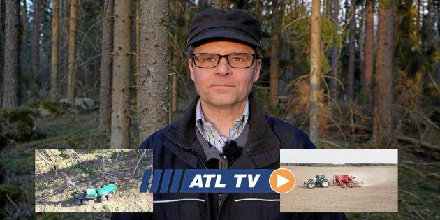 ATL TV: Stormvirket ska ut snabbt