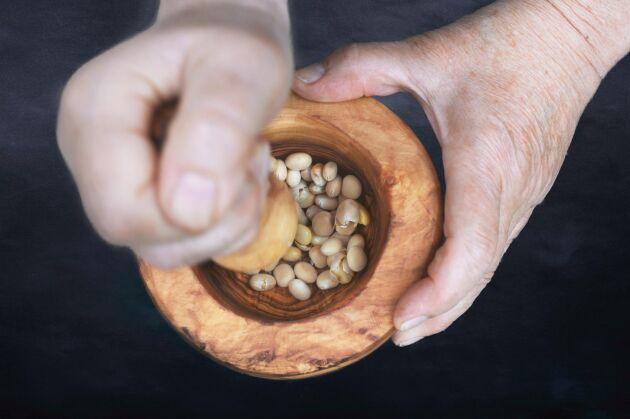 Mortla bönorna så lossnar skalen och du kan ett gott mos. Obs! Inte av vilda lupiner som är giftiga.