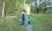 Norra startar skogsskola för barn