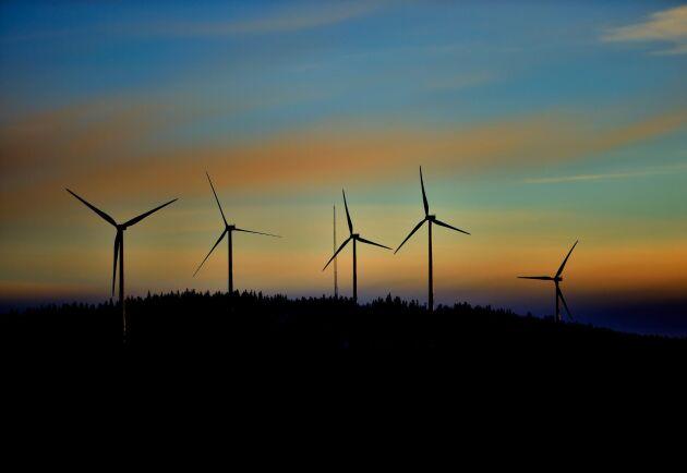 Vindkraftverk i närheten av Malå. Vindkraften i Sverige växer snabbt.