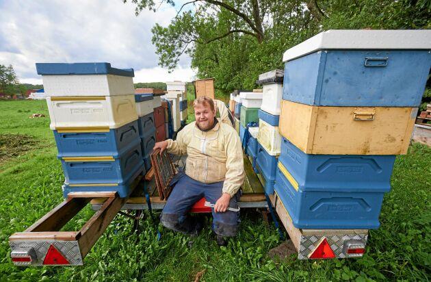 Redan som barn började Rickard Hansson med biodling. Nu har han tagit upp sitt gamla intresse igen.