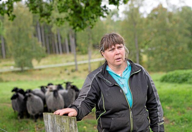 Svenska fåravelsförbundet bjuder in till rovdjursvaka för att manifestera mot vad de anser är en ohållbar rovdjurssituation. - Det är coronatider men det här kan alla vara med på. Vi kan hålla avstånd och visa att varg och rovdjur är ett jätteproblem för oss med djur, säger Gudrun Haglund-Eriksson.