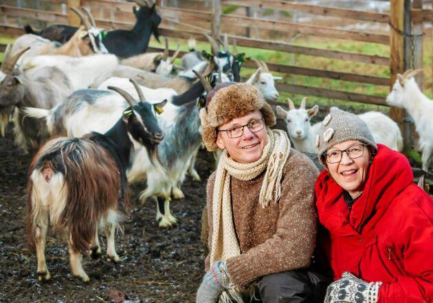 Knut och Jaana med några av gården 40 getter, som gärna höll sig lite i bakgrunden vi fotograferingen.