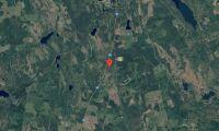 Skog i Vansbro kommun såld
