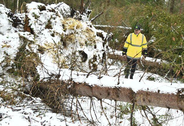 Stefan Lindskog inspekterar sina ägor norr om Rimbo i Uppland.