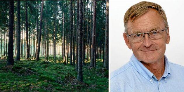 Krönika: Skogen dominerar debatten