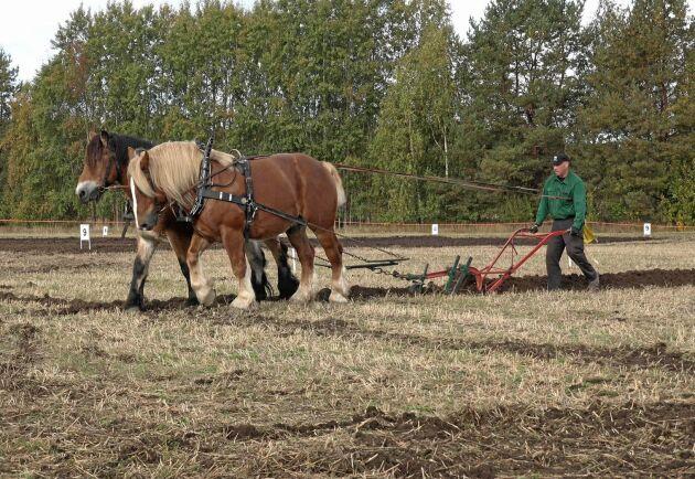 Johan Eriksson kom tvåa i hästplöjningsklassen.