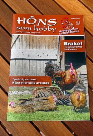 Jeanette Perssons tidning Höns som hobby kommer ut fyra gånger per år. Den handlar om alla sorters höns och om livet med höns i en hobbyflock.