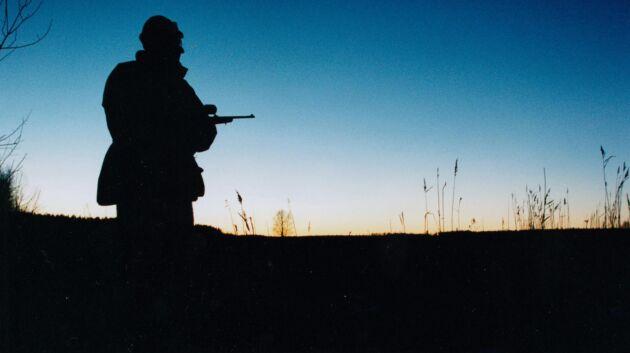 En ny dom slår fast att en skogsägare visst har rätt att överklaga ett beslut om skyddsjakt, meddelar LRF.