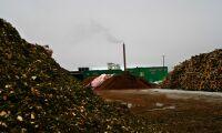 Sverige bäst på bioenergi