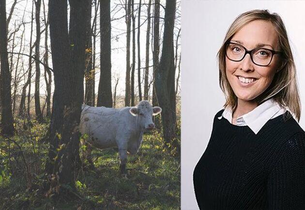 Bland annat producenter med naturbetesdjur kan få det tufft om föreslagen jordbruksbudget går igenom, menar Hanna Österberg.