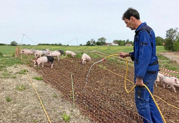 """Rickard Nilsson på gården Klambylid söker en medarbetare som har """"djuröga"""" snarare än en specifik utbildning."""