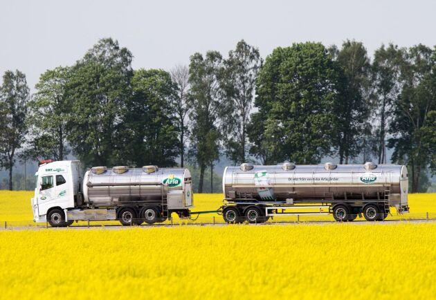 Arlas avräkningspris för konventionell och ekologisk mjölk är oförändrat i juli 2019.
