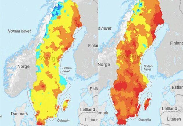 På SMHI:s kartor för brandrisk i landet är det dramatiska förändringar som förutspås under de närmaste dagarna.