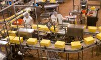 Ostfabrik stängs efter hygieniska brister