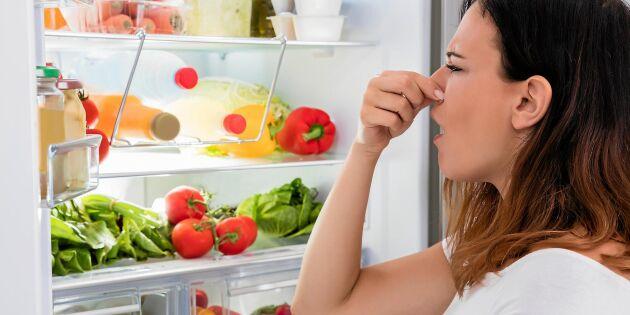 Så får du bort dålig lukt ur kylskåpet – med bakterier!