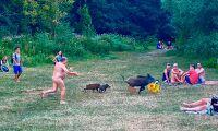 Jagades av tysk nudist – hotas av avlivning