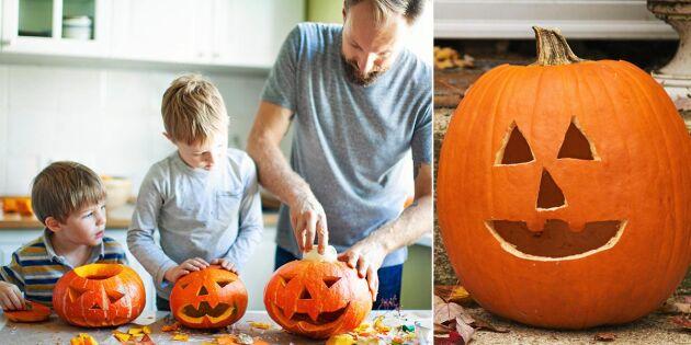 Halloween-pyssel: Så enkelt karvar du ur en pumpa