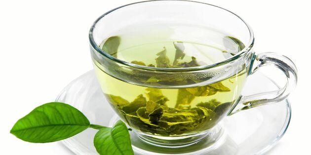 Nyttigt grönt te med ingefära och citron