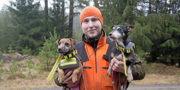 Häng med på jakt med fyra generationer terriers