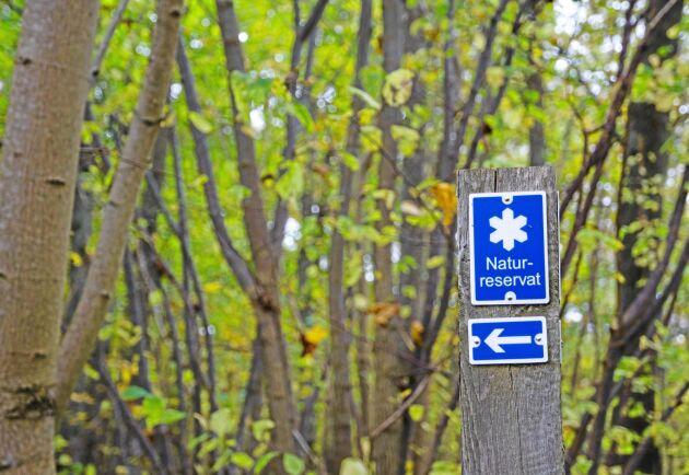 Det kommer att finns betydligt mindre pengar för att ersätta markägare i samband med bildande av naturreservat.