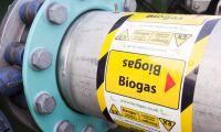 Etanol och biogas behövs mer än någonsin