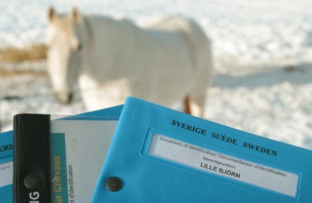 Frågan om Jordbruksverket gjort rätt om tilläggsregisteringen har hamnat på Justitiemannens bord. Den som svenskt hästpass berörs dock inte av nya reglerna.