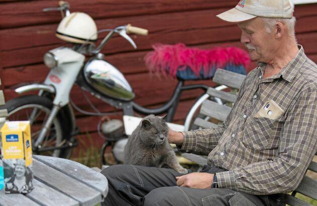 17-åriga katten Tiger kan även han konsten att njuta. Här har han tagit plats i husse Leif Olofssons knä.