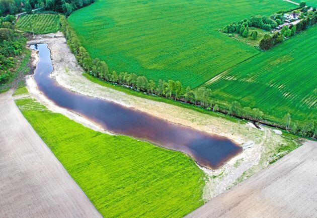 Nyttig. Våtmarken funkar som näringsfälla, bidrar till den biologiska mångfalden och vattenmagasin för bevattning.
