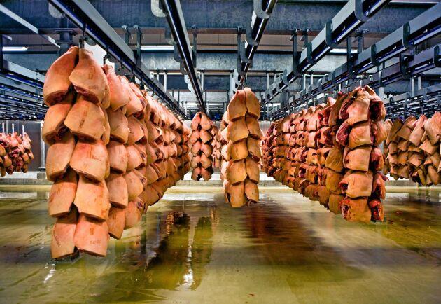 Högtryck i den danska grisindustrin.