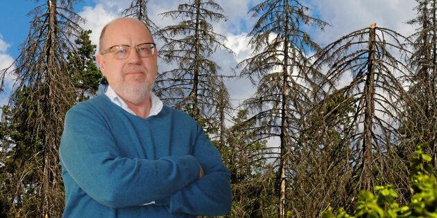 Mer forskning krävs i kampen mot barkborren
