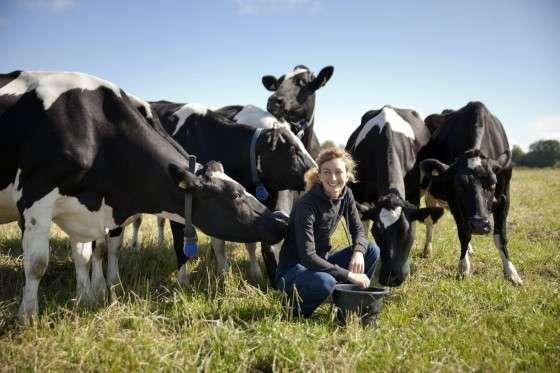 Land.se skriver om bonden Hanna Karlsson som hittar kunder via Facebook.