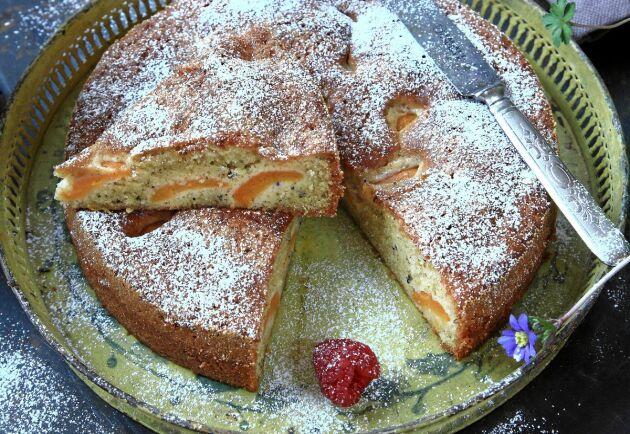 Konserverade aprikoser och kardemumma ger smak och konsistens åt mazarinkakan.