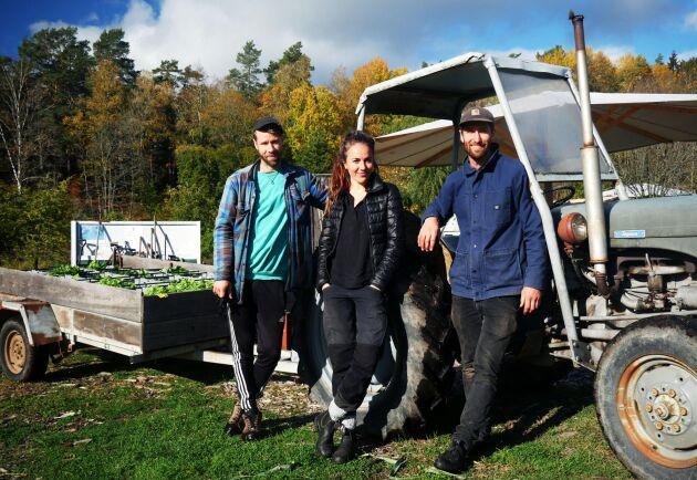 """Robin Tidblom, Simone Grind och Ossian Tidblom driver tillsammans andelsjordbruket """"Under tallarna"""""""