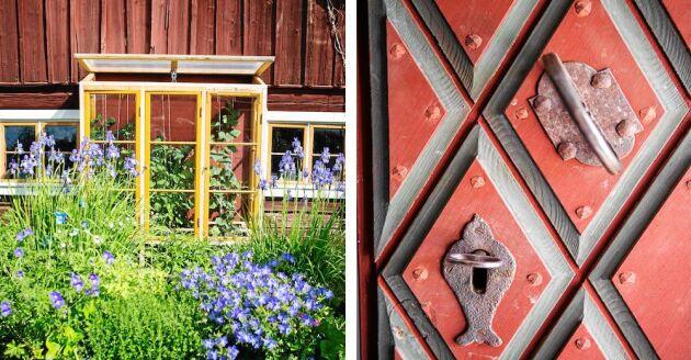 Astrid har anlagt flera fina torparrabatter och odlingsskåpet har sonen Johan gjort. Dörren är nytillverkad efter gammal förlaga från tidigt 1900-tal med klassiskt rutmönster.