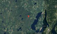 Ny ägare till skogsfastighet i Värmland i maj