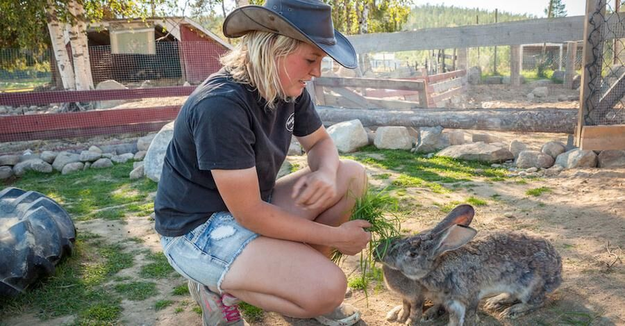 Även klappvänliga kaniner med mjuk päls finns på gården.