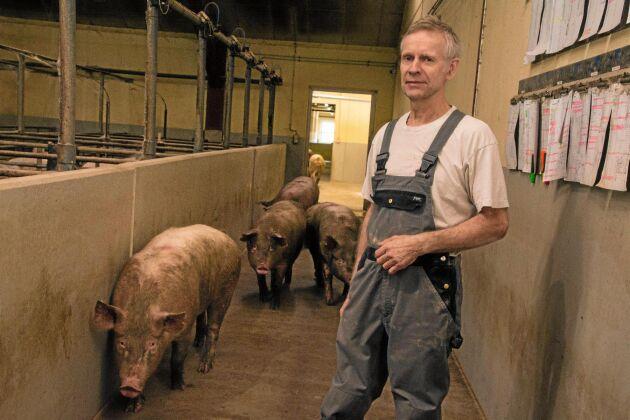 Bent Munk Nielsen är en smågrisuppfödare med många idéer. Han är övertygad om att Danmark på sikt måste närma sig Sverige i sina uppfödningsmetoder.